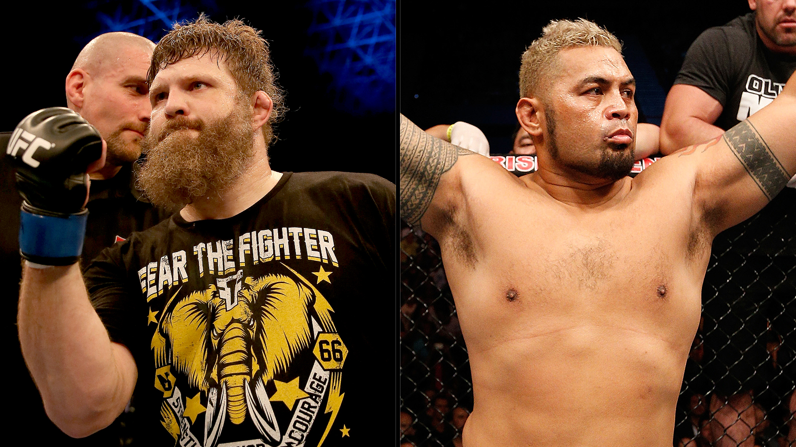 Mark Hunt And Roy Nelson
